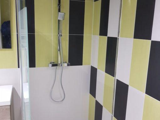 Argol réalisation d'une salle de bain avec douche italienne et wc suspendu (1)