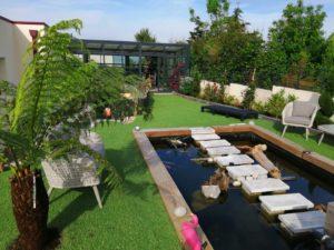 création jardin bac à poissons saint-nic (1)